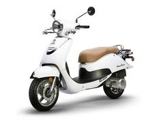 Scooters For Sale, Motor Scooters, 49cc Moped, 50cc, Car Detailing, Havana, Arctic, Motorcycle, Classic