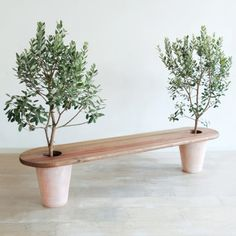 Garden bench with potted trees on either end. This would be easy to DIY