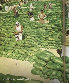 Watermelon from Mosel - Iraq 1961 Places Around The World, Around The Worlds, Naher Osten, Iraqi People, Expo Milano 2015, Baghdad Iraq, Asia, Cradle Of Civilization, Bagdad