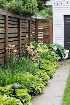 Front Garden Design 14 Backyard Privacy Landscaping Ideas, Most Nicest and also Sweetest Too Privacy Fence Landscaping, Privacy Fence Designs, Backyard Privacy, Backyard Fences, Backyard Landscaping, Landscaping Software, Garden Privacy, Garden Fences, Luxury Landscaping