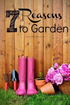 Consider gardening for not only the healthy food, but the peace of mind it can bring. Here are my top 7 reasons to garden, not counting the cute pink boots!