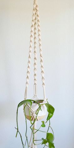 Nomi Macrame Plant Hanger via KnotOnomy . Click on the image to see more!