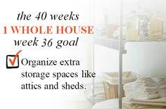 40 Weeks - 1 Whole House: Week 36 Goal - Organize Extra Storage Spaces Like Attics and Sheds | Organize 365