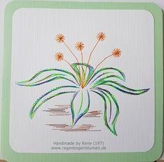 Grußkarten-Set 197 - Motiv: Blumen 41 / A&N Bloem 116 - Copyright Motiv: A&N - Doppelkarte mit Umschlag 13,5 x 13,5 cm