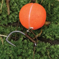 10 hookbait attachments you need to know - Articles - CARPology Magazine Carp Fishing Tips, Carp Fishing Bait, Fishing Rigs, Fishing Knots, Best Fishing, Fly Fishing, Carp Flies, Fish Information, Fishing Pictures
