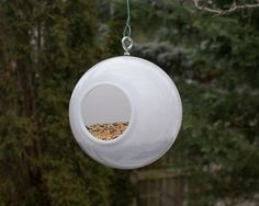 Modern Bird Feeder Birdfeeder Wild Outdoor Birds - Seed Holder White Acrylic Plastic Orb Globe