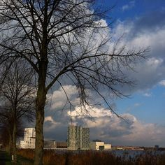 Almere skyline from Lake Weerwater