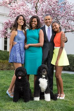 Sunny (bottom left) is the younger of the Obama family's two Portuguese water dogs. The elder, Bo (bottom right), was promised to the Obama daughters when their father won the 2008 election. The Obama family pictured above in their 2016 Easter portrait (From left to right: First daughter Malia, first lady Michelle, president Obama and first daughter Sasha)