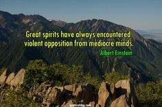 Great spirits have always encountered violent opposition from mediocre minds. | quotesofday.com