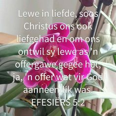 God is liefde Goeie More, Afrikaans, Bible Scriptures, Faith, God, Christianity, Motivation, Quotes, Do Your Thing