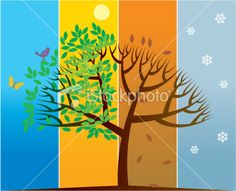 four seasons pictures - Google Search