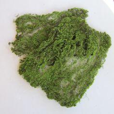 Moss Sheet for Miniature Garden, Terrarium, Craft, Artificial Green Sheet Moss by GardenBarn on Etsy