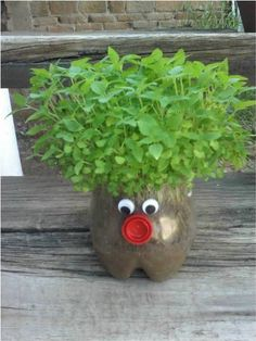 """Green Hair"" Planters - Find Fun Art Projects to Do at Home and Arts and Crafts Ideas"