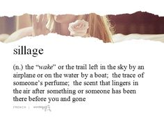 Sillage is a French word for the wake of a ship travelling across the sea, as in the stream left behind a boat. Description from tumblr.com. I searched for this on bing.com/images