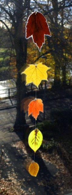 Laminated leaves make wonderful classroom decoration and help develop stronger ties to the natural world, just by mere exposure Leaf Art,DIY Leaf Art, Autumn Crafts, Autumn Art, Nature Crafts, Holiday Crafts, Autumn Leaves Craft, Autumn Ideas, Fall Leaves, Art For Kids, Crafts For Kids