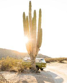 "587 Likes, 3 Comments - Free People Arizona (@fparizona) on Instagram: ""Make the weekend count ✨ // @vivianneflrs #sundaze #vanlife #weekendvibes"""