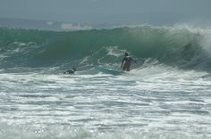 Not me, but waves like that when I was in! A good day at Jeffrey's bay Port Elizabeth, Good Day, South Africa, I Am Awesome, Beautiful Places, Surfing, Waves, Mountains, Nature