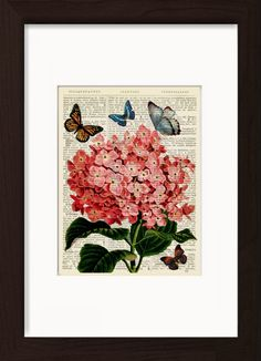Butterflies With Pink Hydranga Flower Mounted / Matted Dictionary Page Print. Mounted /Matted and Printed on 1890's Italian Dictionary. All our dictionary pages have that beautiful golden patina color that only comes from age. The result is a unique and absolutely beautiful print that is definitely a conversation piece. Page Size 180 mm x 140 mm / 5.5 x 7.5 inches. Mount Opening 130 mm x 170 mm / 5 x 6.5 inches. FRAME NOT INCLUDED. Every print comes with a mat/mount which means the final...