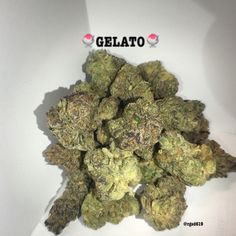 ‼️‼️NEW STRAIN ALERT‼️‼️ 🍧GELATO🍧 for all you cookie heads #Gelato $60 minimum donation no delivery fee call and get verified today (619)753-5012 #delivery #allSanDiegoCounty #Gas #sd #sandiego #bomb #sdmmj #mmj #delivery #ritegreenssd #ritegreensdeliverysd #hybrid #sativa #prop215 #420 #seedless #420friendly #relax #reefermadnes #ondeck #donationonly #nonprofit #nodeliveryfee #prop215 #sandiego #danks #topshelf #topshelflife