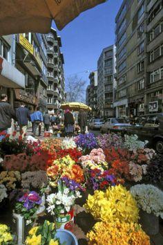 İstanbul ♥, turkey ❥ॐ ✫ ✫ ✫ ✫ ♥ ❖❣❖✿ღ✿ ॐ ☀️☀️☀️ ✿⊱✦★ ♥ ♡༺✿ ☾♡ ♥ ♫ La-la-la Bonne vie ♪ ♥❀ ♢♦ ♡ ❊ ** Have a Nice Day! ** ❊ ღ‿ ❀♥ ~ Mon 2nd Nov 2015 ~ ~ ❤♡༻ ☆༺❀ .•` ✿⊱ ♡༻ …