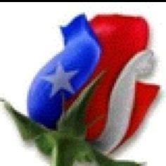 True Texas Rose