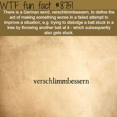 WTF Fun Facts is updated daily with interesting & funny random facts. We post about health, celebs/people, places, animals, history information and much more. New facts all day - every day! Rare Words, New Words, Cool Words, Wtf Fun Facts, True Facts, Crazy Facts, Funny As Hell, The Funny, The More You Know