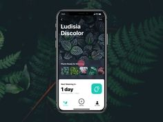 Watering Tracker App task tracker nature home ux ui animation motion interaction interface mobile app design Interaktives Design, App Ui Design, User Interface Design, Design Trends, Design Concepts, Layout Design, Design Ideas, Ui Animation, Mobile Ui Design