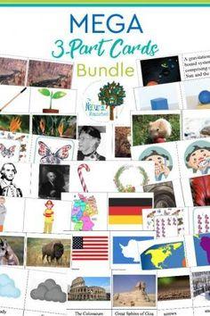 Montessori 3-part Cards MEGA Bundle ~ 48 Sets