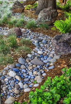 75 gorgeous dry river creek bed design ideas on budget River Rock Landscaping, Landscaping With Rocks, Front Yard Landscaping, Landscaping Ideas, Hillside Landscaping, Landscaping Software, Dry Riverbed Landscaping, Shade Landscaping, Inexpensive Landscaping
