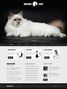 Cat WordPress Theme #pets #website http://www.templatemonster.com/wordpress-themes/42117.html?utm_source=pinterest&utm_medium=timeline&utm_campaign=conn