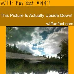 awesome photography illusion WTF FUN FACTS HOME / See MORE TAGGED/ weird FACTS