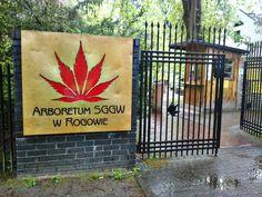 arboretum in Rogow (Poland)