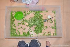 Green peas are not only fun to eat they also make a fun sensory bin filler! Here is a great taste safe sensory bin for babies, toddlers & preschoolers! Baby Sensory Play, Sensory Bins, Green Peas, Infant Activities, Toddler Preschool, Kids And Parenting, Happy, 1 Year