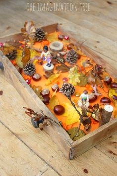 Autumn Woods Sensory Small World - The Imagination Tree Create an Autumn woods sensory small world play in a drawer for hours of fall themed imaginative play and lea Autumn Eyfs Activities, Nursery Activities, Toddler Activities, Reggio Emilia, Imagination Tree, Fall Preschool, Small World Play, Nature Table, Sensory Play