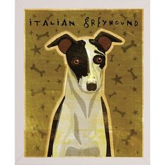 "East Urban Home 'Italian Greyhound Black and White' Graphic Art Print Format: Affordable White Medium Framed Paper, Size: 10"" H x 8"" W x 2"" D"