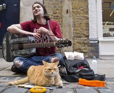 A Street Cat Named Bob: The Cat Who Goes Busking