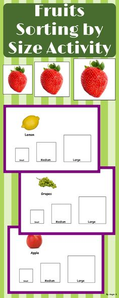 Fruits Sorting by Size with real life pictures is a great activity for early age, kindergarten, preschool and students with autism. #sorting #fruit #autism #teacherspayteachers #tpt #sortingresource #sped For more resources follow https://www.pinterest.com/angelajuvic/autism-and-special-education-resources-angie-s-tpt/