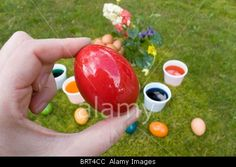 Royalty free stock photography at Alamy: Easter traditions - Hand keeping and showing a red Easter egg.
