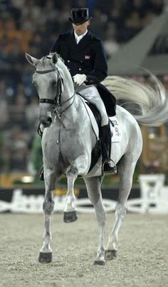 Blue hors matiné, the dancing horse, a dressage star taken all too soon. Imagine what she could have done in the breeding shed.  If you haven't watched her on YouTube, DO SO with tissue in hand as it brings me to tears every time. Beautiful