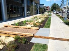 Image result for bioretention planter edging