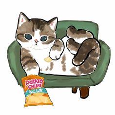Kitty Drawing, Cute Cat Drawing, Cute Cartoon Drawings, Animal Drawings, Kittens Cutest, Cute Cats, Cat Doodle, Cat Icon, Cat Wallpaper