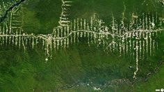 O desmatamento da Floresta Amazônica, a partir do Pará, Brasil
