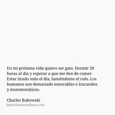 Citas - En mi próxima vida quiero ser gato. Dormir 20  horas al día y esperar a que me den de comer.  Estar tirado todo el día, lamiéndome el culo. Los  humanos son demasiado miserables e Iracundos y monotemáticos.   Charles Bukowski Book Quotes, Words Quotes, Sad Quotes, Sayings, Frases Bro, Dear Letter, Quotes Bukowski, Charles Bukowski, Always On My Mind