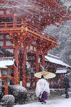 .Yuki 雪