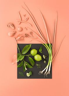 Pink green study. Art Direction / Styling Zoe Hodgens - Sarah Anderson Photography
