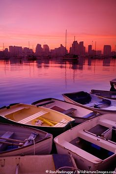 Sunrise-downtown San Diego by Ron Niebrugge/WildNatureImages.com