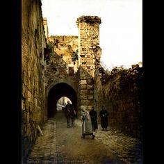 Photoglob Zurich, La Tour Antonia, Jérusalem, 1895