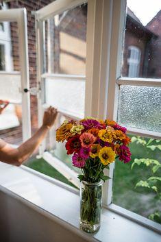 Zinnien Gardening, Table Decorations, Design, Home Decor, Blog, Mulches, Potting Soil, Fruit Garden, Summer Flowers