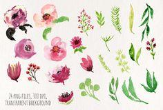 Vine Flowers by Webvilla on Creative Market