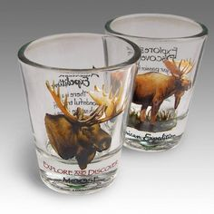 Bull Moose Shot Glass Set